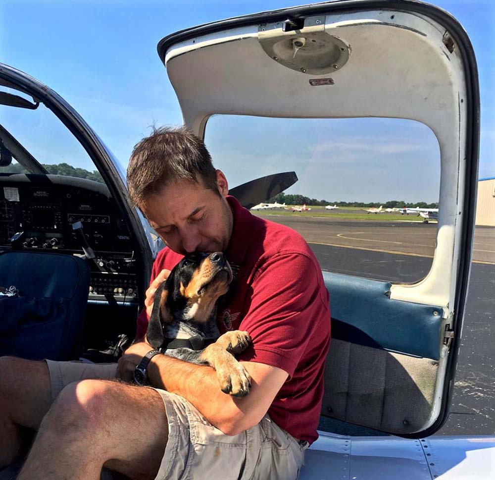 Paul salva perros