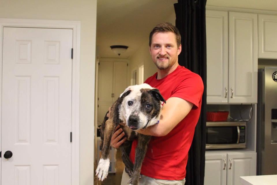 Perro rescatado por familia