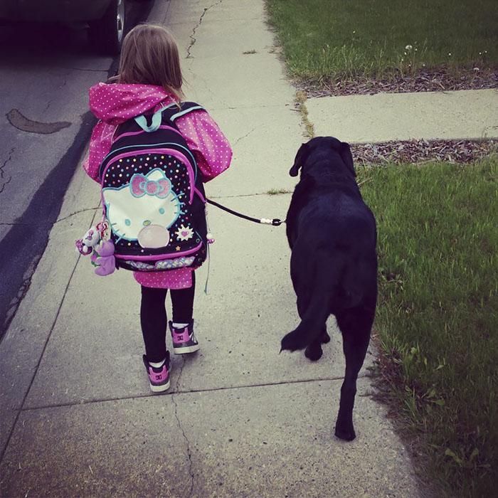 Perro y niña van a la escuela