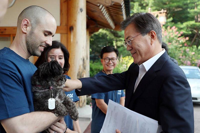 Presidente adopta a perros