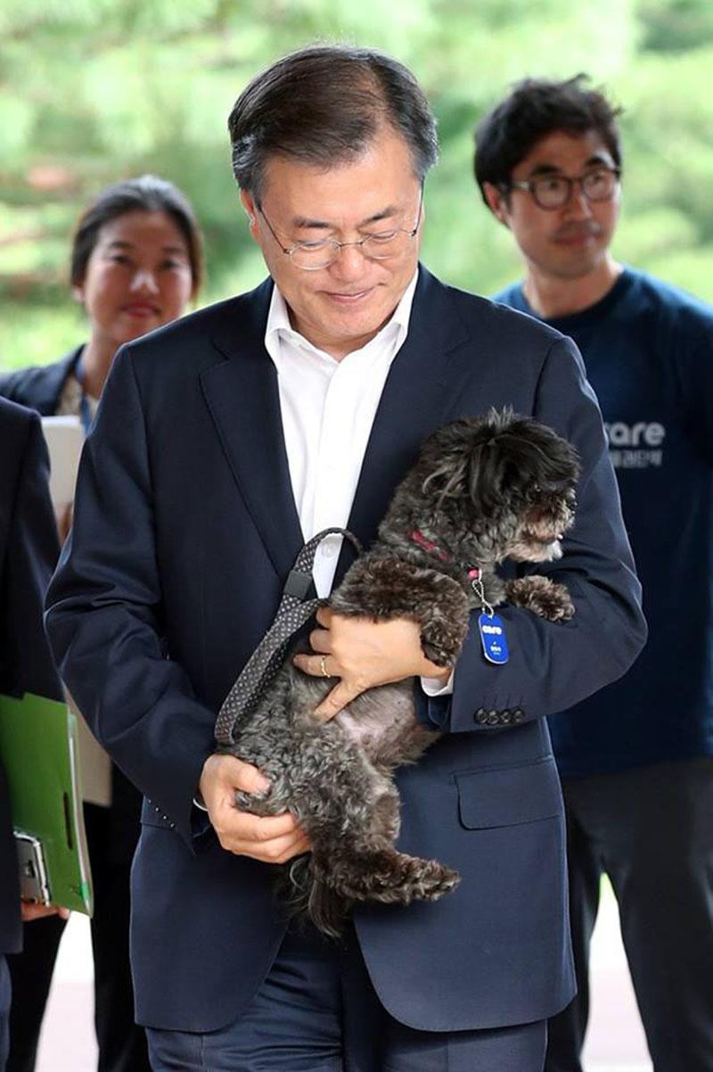 Presidente de Corea del Sur
