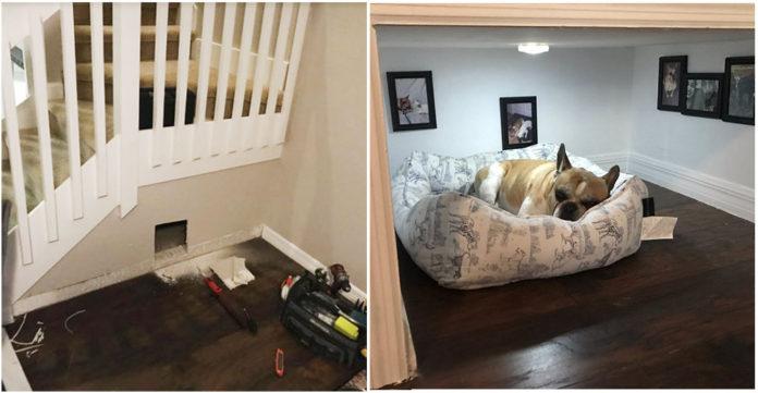 Hombre construye cuarto minúsculo para su perro