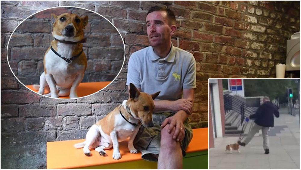 Hombre patea a su perro y un héroe lo rescata