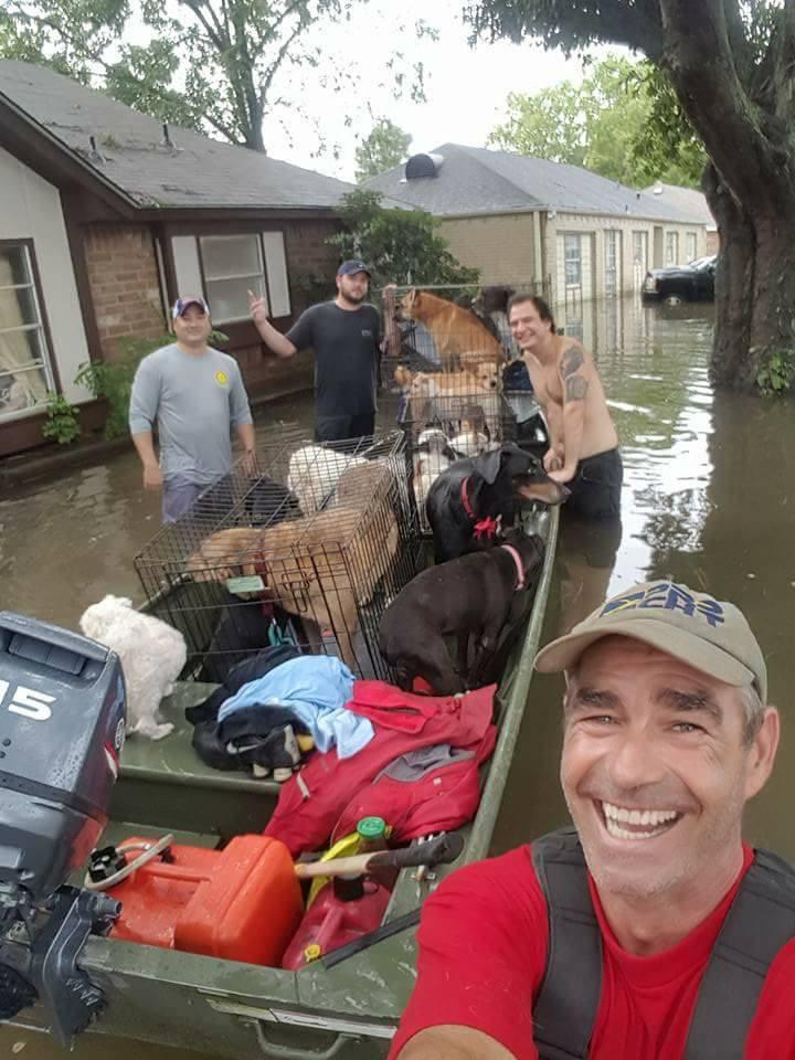Hombres ayudan a rescatar perros del huracán
