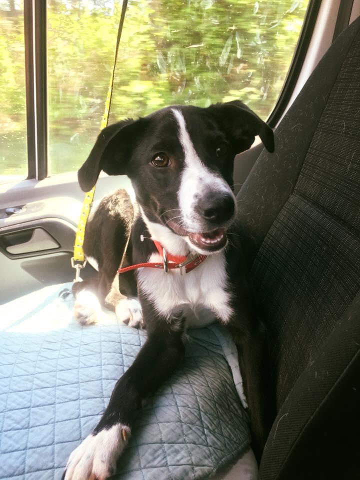 Jaclyn en el auto