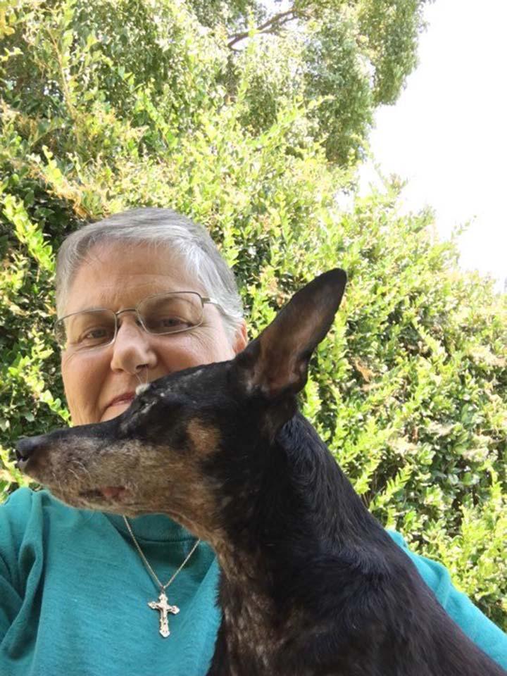 Jake perro con cáncer terminal