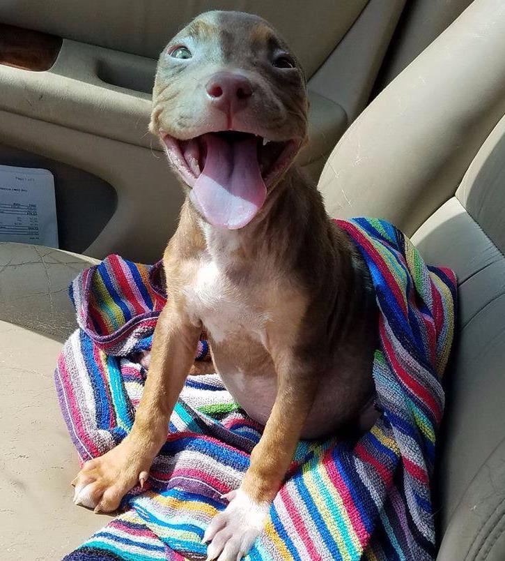 Matilda feliz