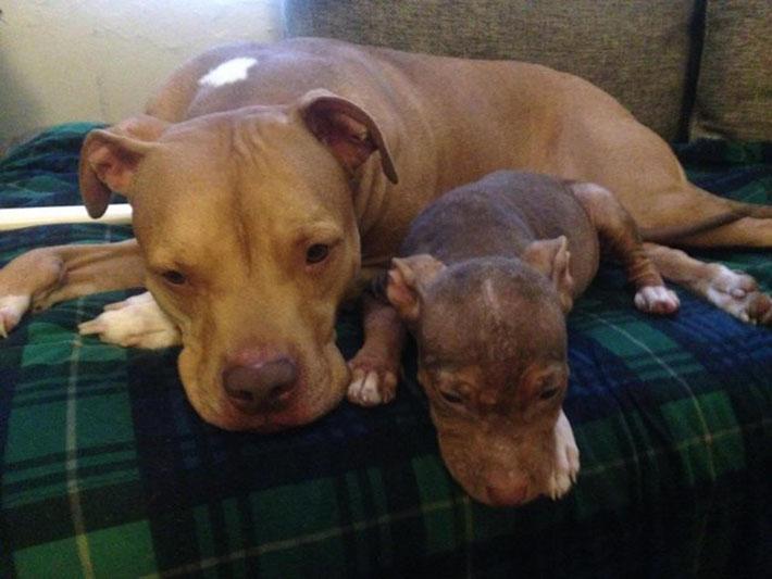 Matilda y su amigo