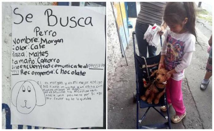 Niña encuentra a su perro gracias a un tierno anuncio