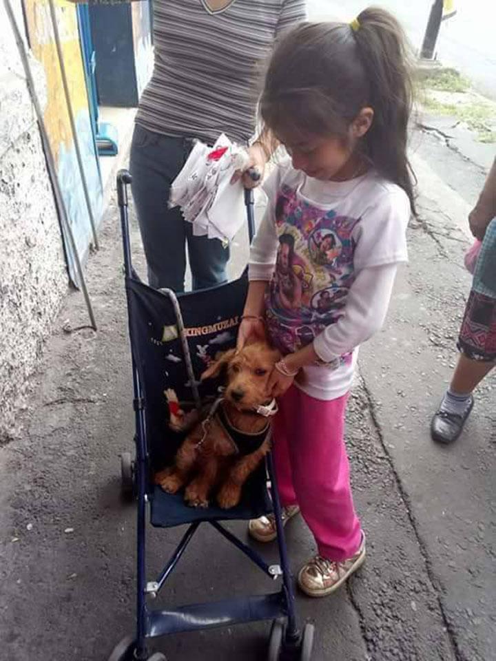 Niña y su perro
