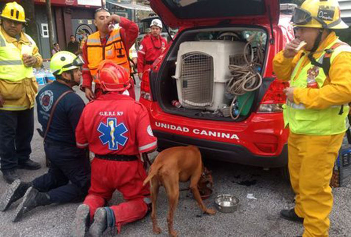 Corporación de bomberos Silao