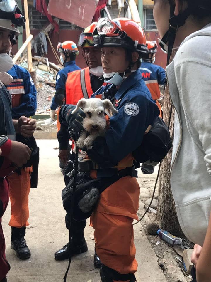 Junior rescatado