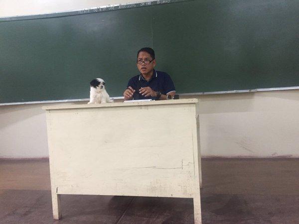 Profesor y su perro