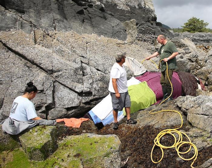 Rescatan ballena