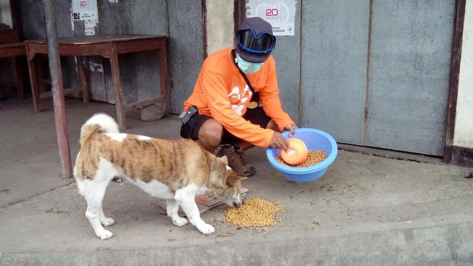 Alimentando perro