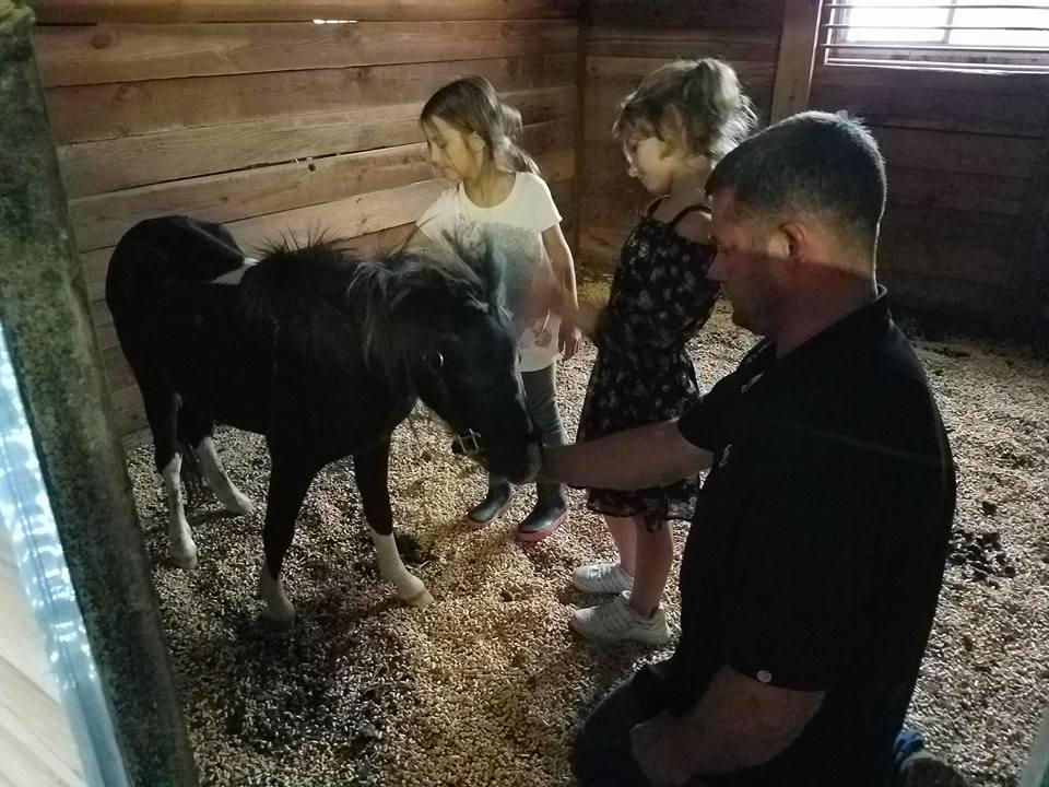 Familia rescata poni
