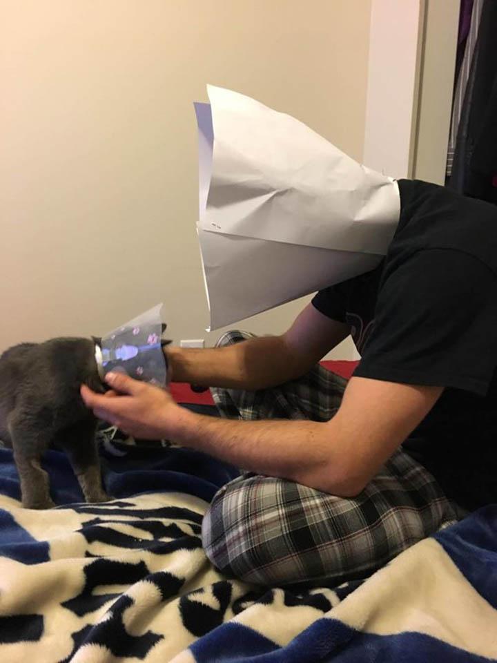 Gato y papá con cono