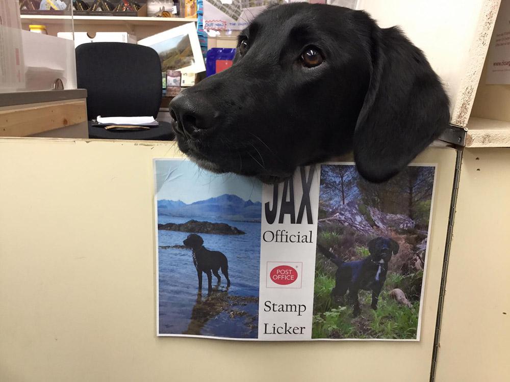Jax en la oficina de correos