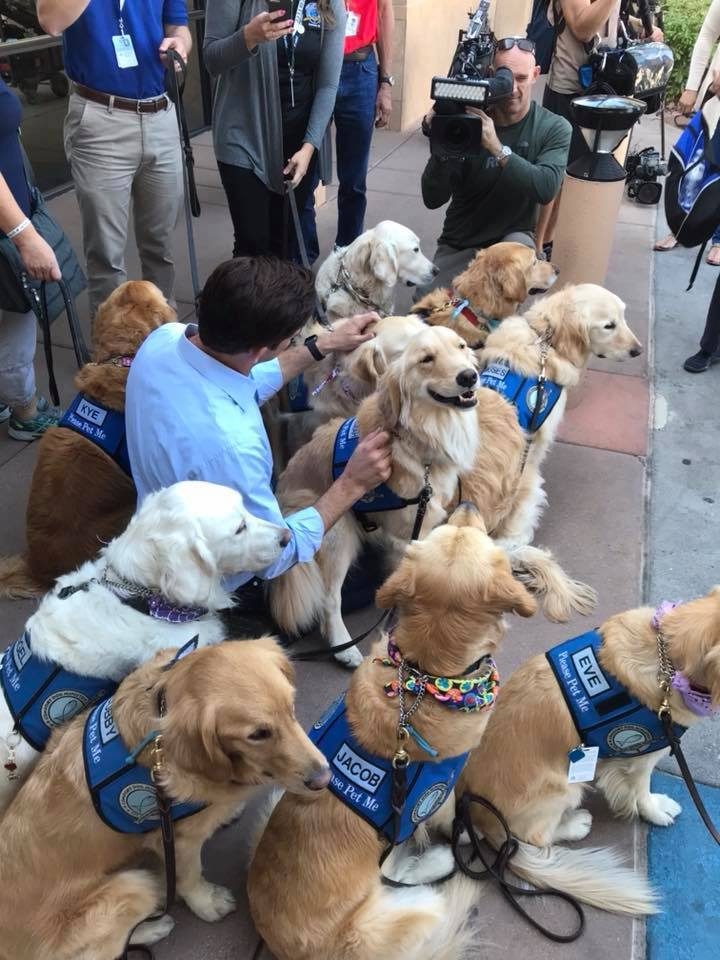 LCC K-9 Comfort Dogs