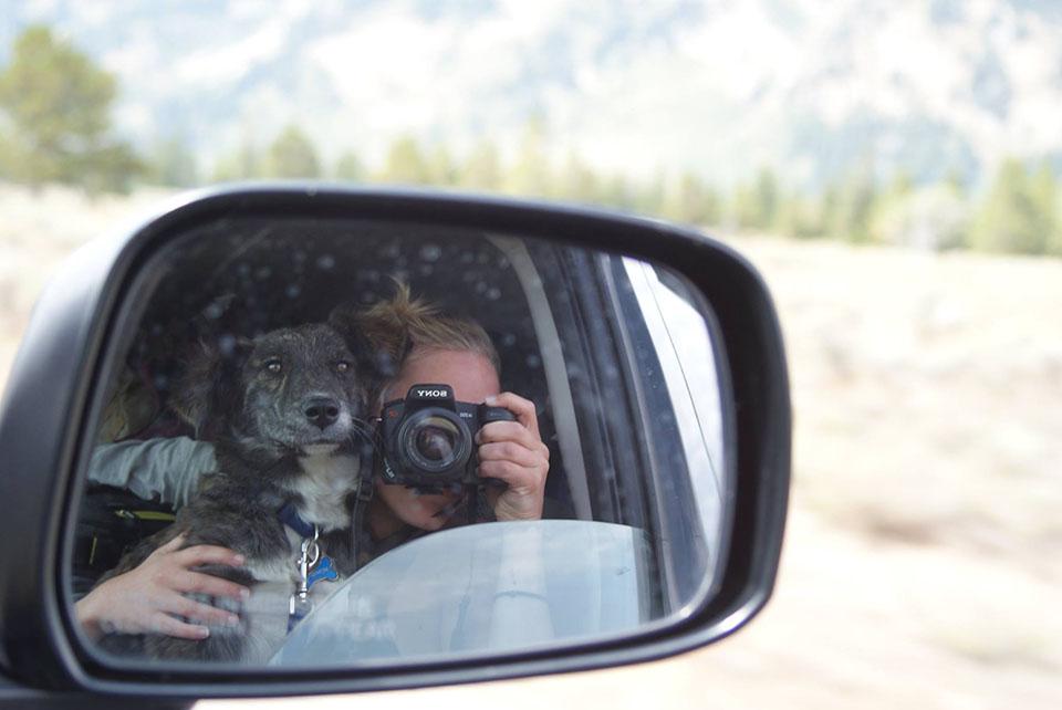 Montana en el auto