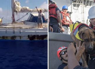 Mujeres rescatadas con sus perros varadas en el mar