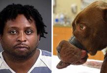 Niegan libertad condicional al hombre que maltrato a Caitlyn