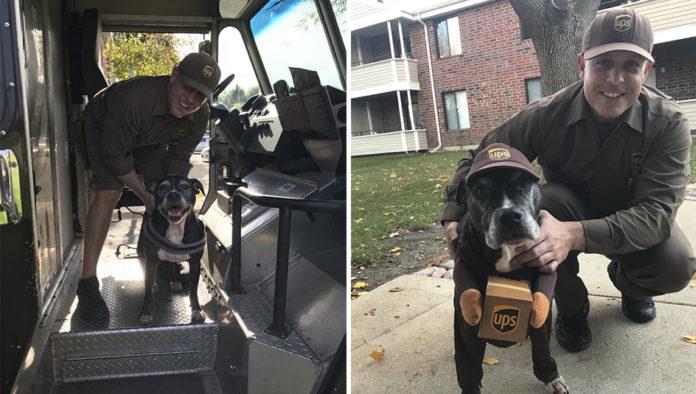 Pareja ordena pedidos para que su perrita vea a su conductor de UPS favorito