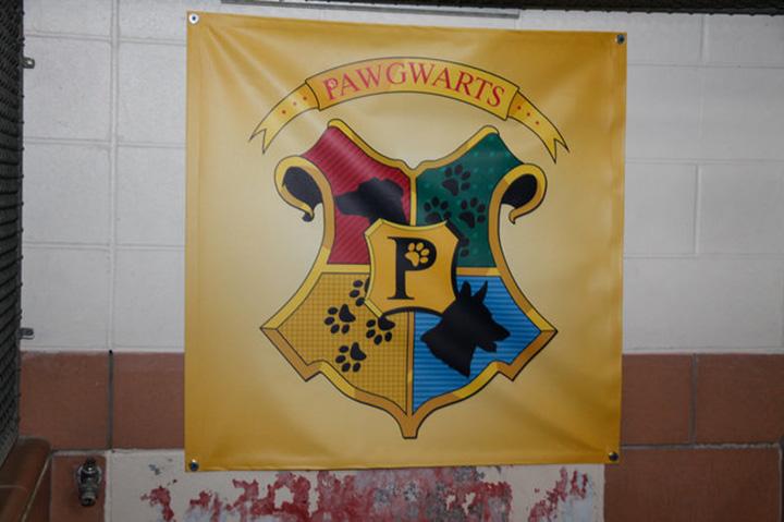 Pawgwarts