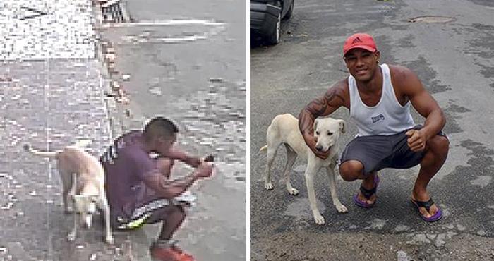 Perro hace pis en espalda del hombre y lo adopta