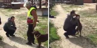 Perro perdido dos años se reencuentra con su padre humano