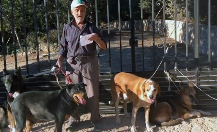 Perros de Santiago