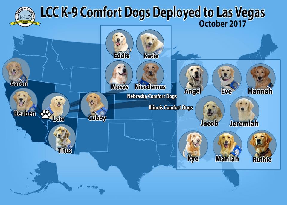 Perros de terapia de Estados Unidos