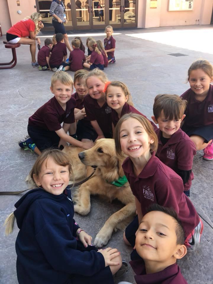 Perros en escuela