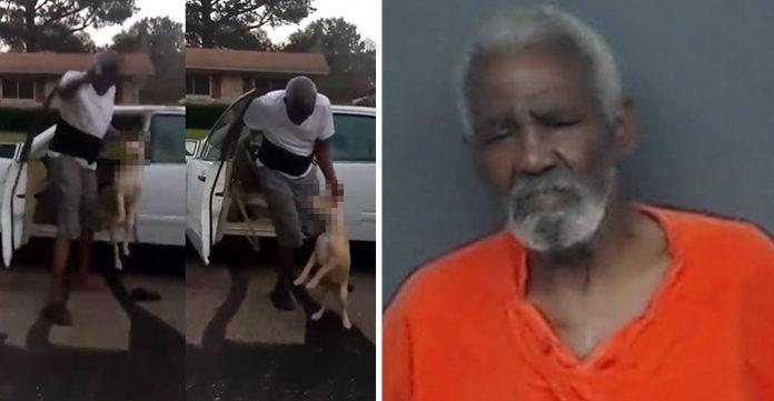 Arrestan al hombre que maltrató a un perro