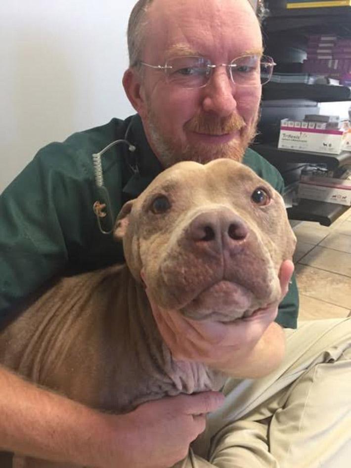 Deebo y el veterinario