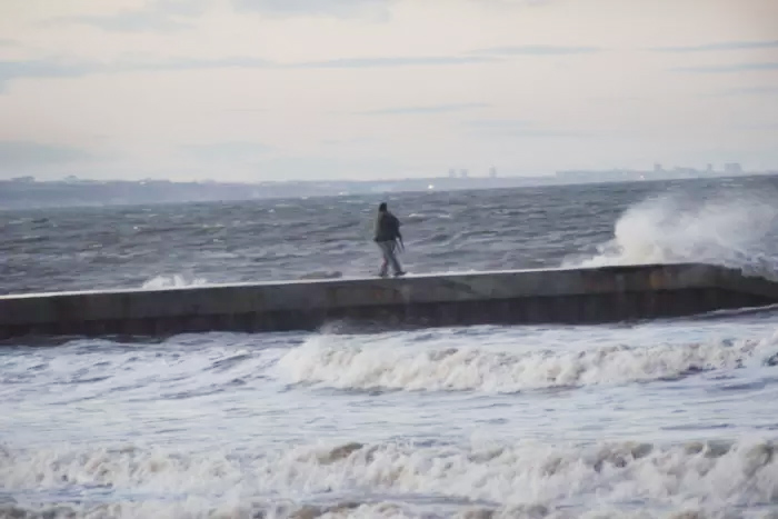 Hombre arroja a un perro al mar