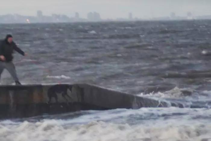 Hombre lanza perro al mar