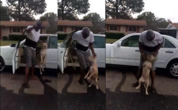La policía busca hombre captado en video maltratando a un perro