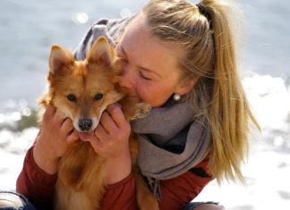 Los humanos aman más a los perros
