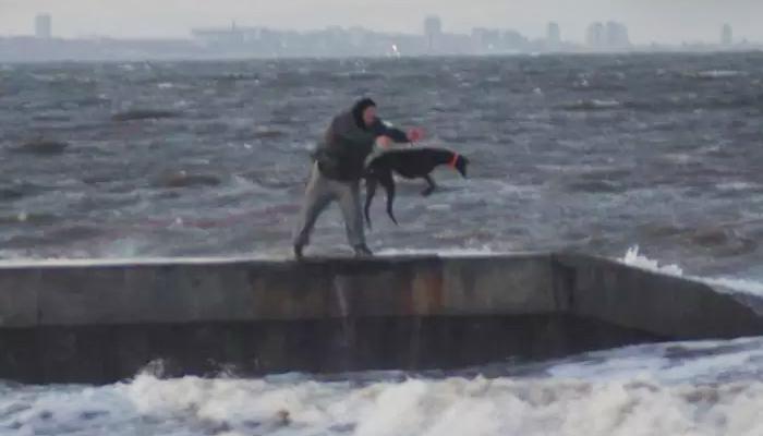 Perro arrojado al mar