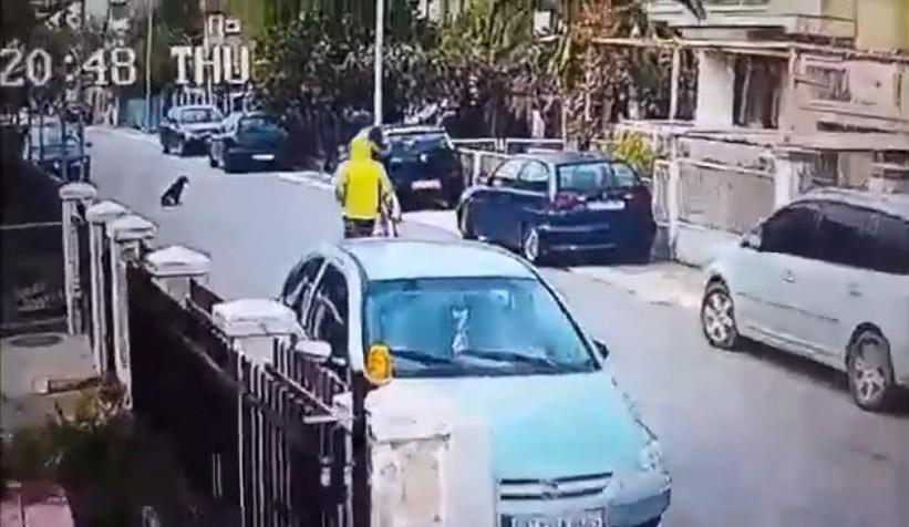 Perro y ladrón
