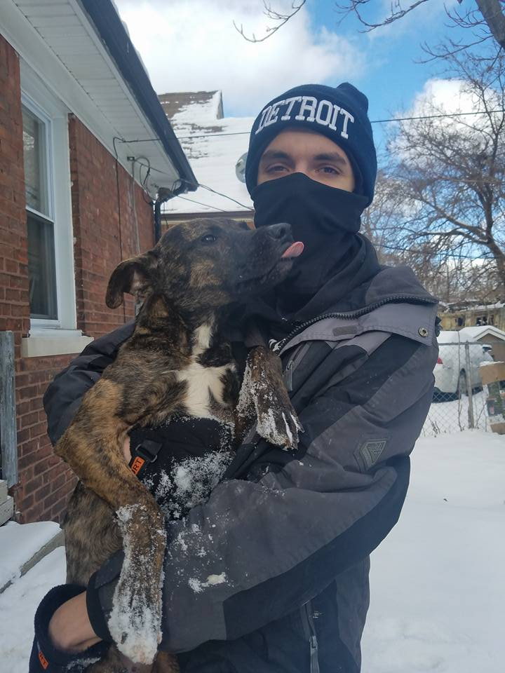 Blizzard da besos