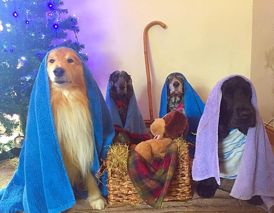 Escena de Natividad