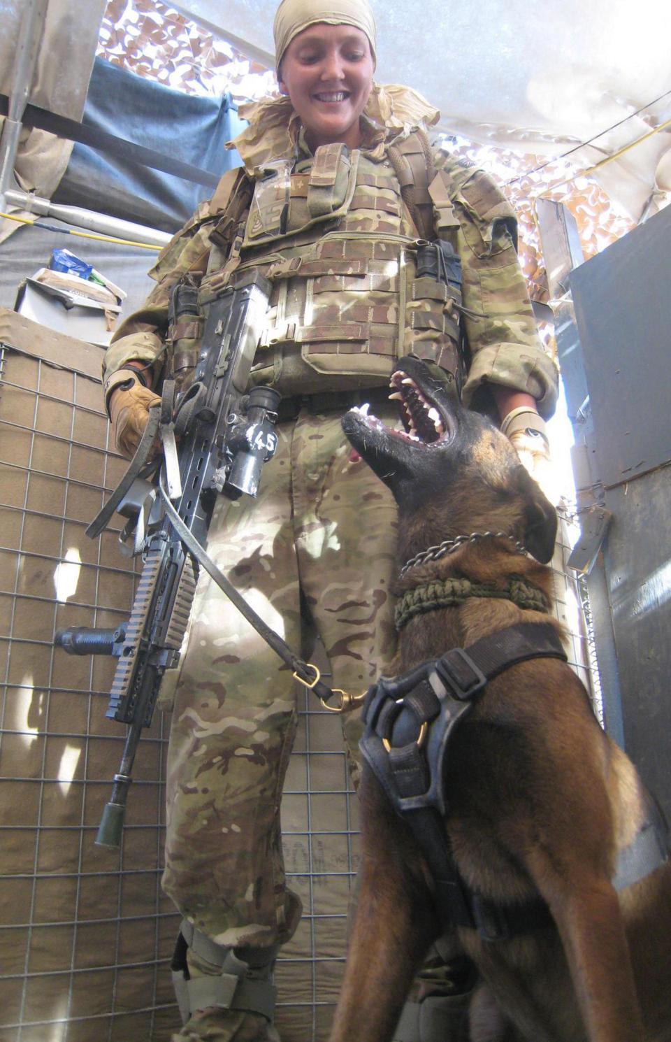 Perro en el ejército