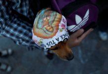 Perros peregrinos son olvidados en la Basilica de Guadalupe