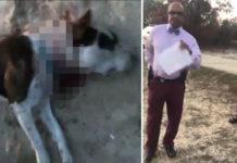 Policías obligan a hombre a cortarle la cabeza a su perro