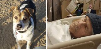Último deseo de este hombre moribundo es encontrar un hogar para su perro