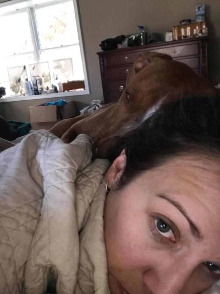 Woody ama la cama