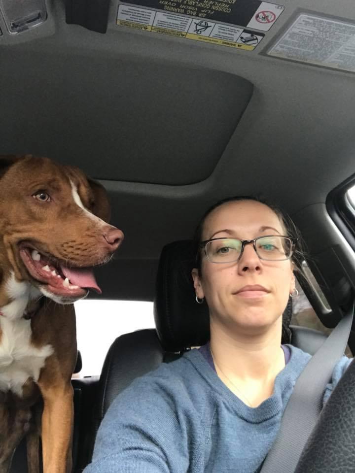 Woody en el auto