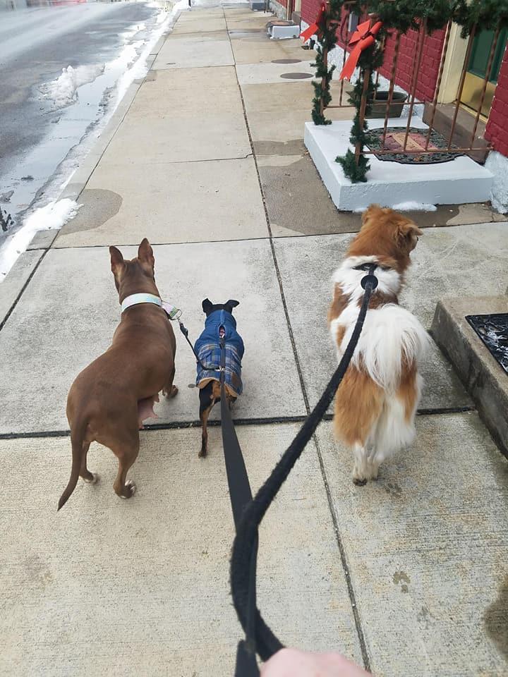 Carla de paseo